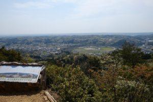 山から見る巾着田