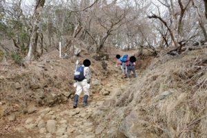 登山道1例