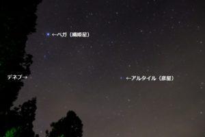 説明入の星