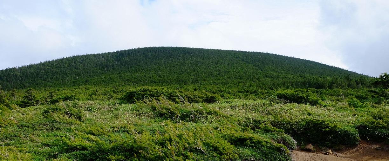 「東吾妻山」~浄土平湿原~鎌池・白山石楠花が見頃だった