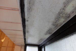浴室天井3