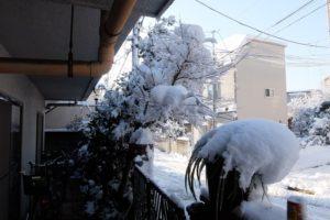 玄関から外の雪景色