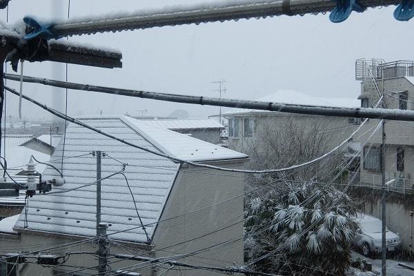 コロナ騒動で求人が激減!/日曜日の都心は雪と自粛でガラガラ