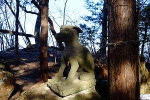 山頂の狼狛犬