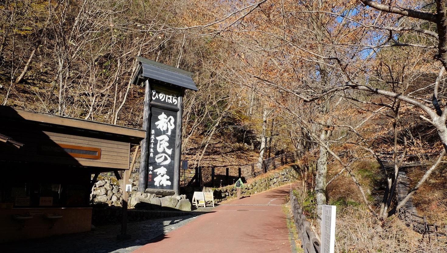 「三頭山」①東京の秘境~桧原村~都民の森