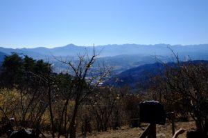 武甲山とロウバイ