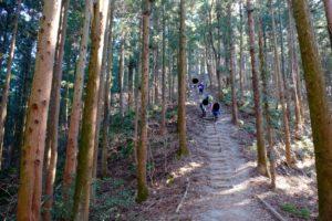 階段状の登山道