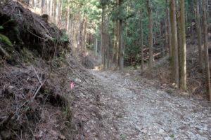 登山道に行く林道