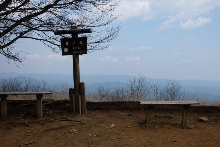 棒ノ折山(棒ノ嶺)~ガイドブックにない楽ちんコース
