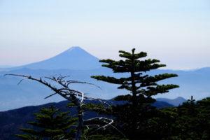 国師ヶ岳から富士山2